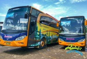 bus-pariwisata-gracias-47-seat1