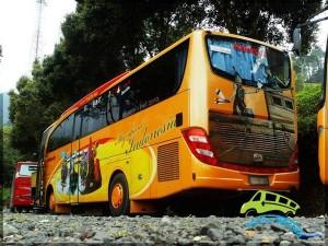 bus-pariwisata-gracias-59-seat1