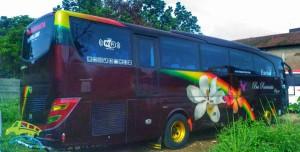 bus-pariwisata-rinjani-55-seat (1)