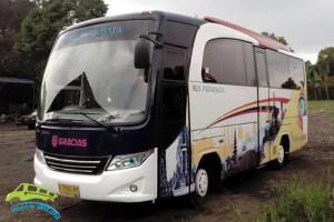 medium-bus-gracias-31-seat (1)